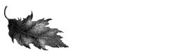 The Cornwall Foundation Logo